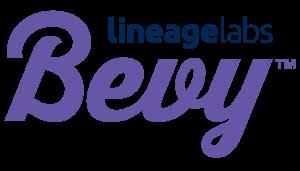 Bevy_lockup_logo_cmyk